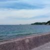 松山の海辺をドライブ。家具(TOWER)に食堂(みなと食堂)、アート(ミウラートビレッジ)を巡る